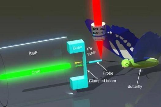 我国科学家成功实现用于高灵敏度纳米力测量的光纤尖端聚合物夹束探头