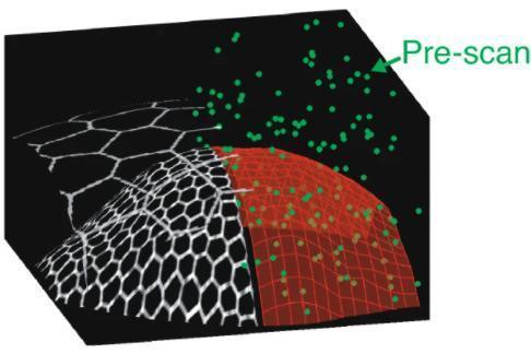 新型智能显微镜:可自适应调整扫描模式,曲面也能清晰成像