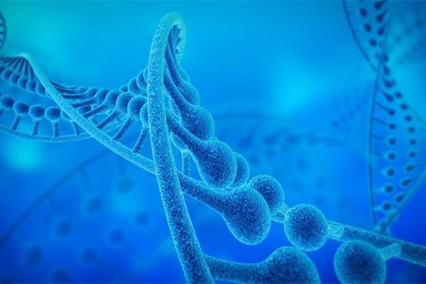 神奇女子自带两套DNA!刚生下的孩子竟被鉴定不是亲...
