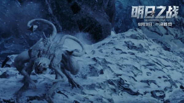 冰雪中的白长钉.jpg