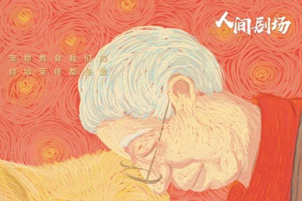 爱奇艺纪录片《离不开你》首播引热议 聚焦人宠衰老的解法