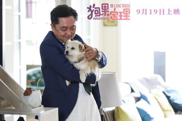 电影《狗果定理》曝推广曲MV 献给流浪动物的温暖情歌