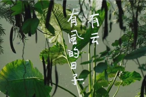 广汽丰田丰云行APP电影短片《有风的日子,有云》引起广泛关注,传递品牌爱与温度