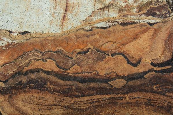 体长一米的海蝎!中国首次发现4.3亿年前的混翅鲎化石
