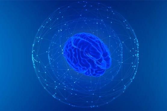 科学家成功绘制人类大脑的隐秘领域,有望帮助解决青光眼等视觉问题