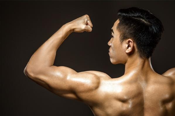 新机制!《科学》:无需干细胞,肌肉就能自我修复