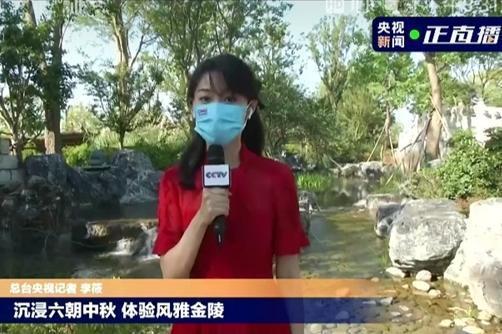 拈花湾文旅倾心打造金陵小城,央视记者带你打卡风雅古都