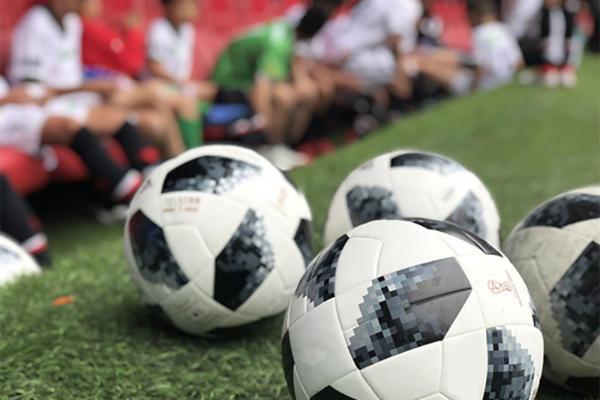 世预赛国足0-1日本遭遇两连败,接下来对阵越南会做出怎样调整?