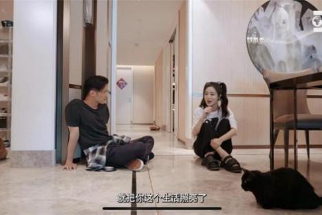 中国版《家有恶猫》定档 麦富迪带你一起云撸猫