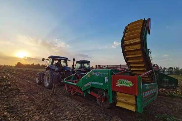 山西五寨:走出特色产业发展的乡村振兴路