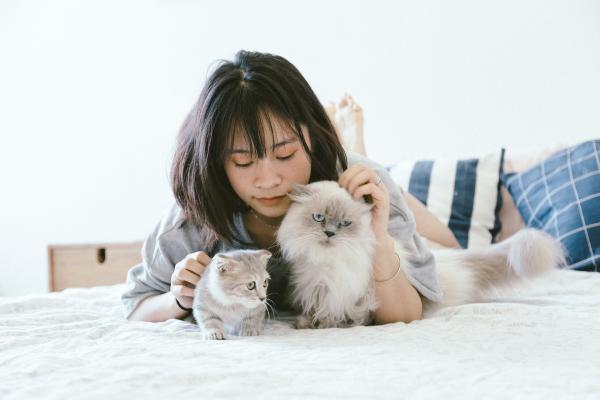 """Kakato卡格宠物罐天然原材料,给宠物最高品质的""""爱"""""""