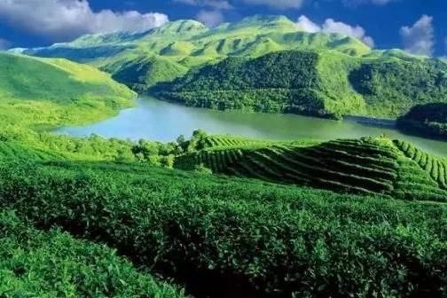 贵州匀酒新厂投产,万吨产能未来可期