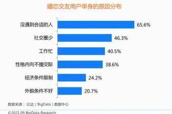 中国互联网婚恋交友市场研究报告:百合佳缘用户认知度、满意度双高