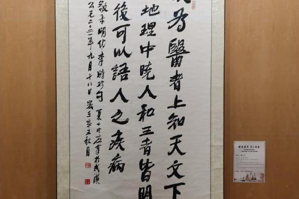第二届世界中医药书画展:表现中医药文化 弘扬抗疫精神