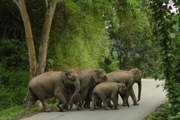 生态 | 做好新时代自然保护区的守护者