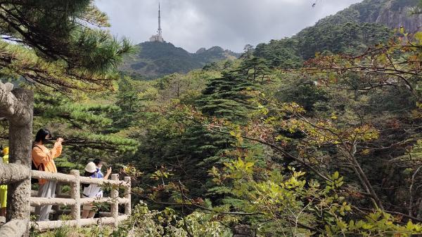 旅游 | 国庆假期尾声 黄山风景区客流逐步回落