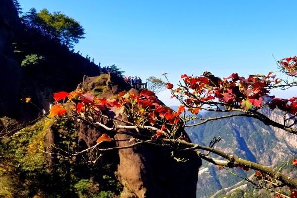 国庆假期尾声 黄山风景区客流逐步回落