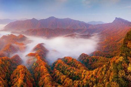 旅游 | 相约光雾山,赏金秋最美红叶