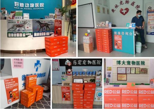 RedDog红狗 | RED公益关爱流浪动物公益追踪