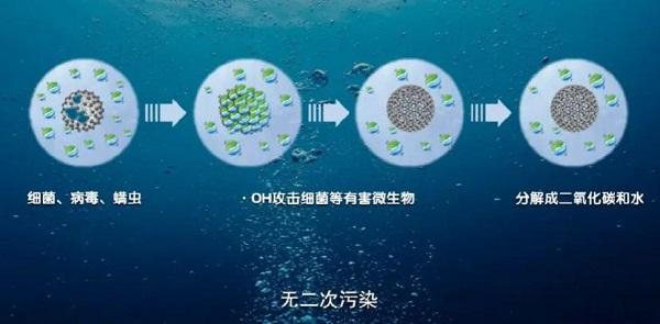为何说洗护行业可以发挥蓝氧消毒杀菌的潜力?因为所有条件都已具备