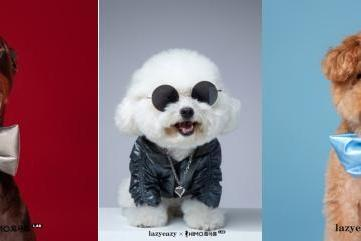 海马体宠物友好店携手LAZY EAZY 引领人宠生活方式新时尚