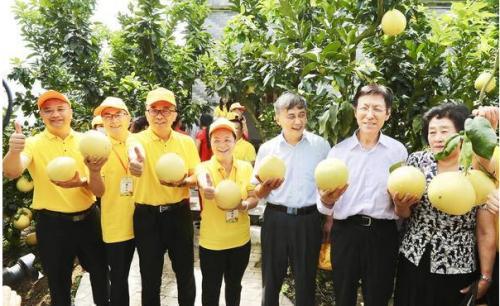 大埔家乡生态特品直播节 以柚为媒创新高度