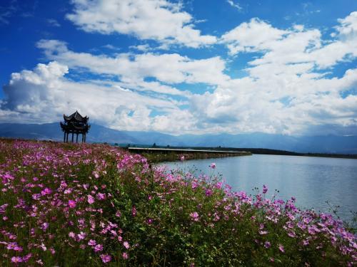 盐源乡村振兴农文旅产业示范点柏林湖苹果庄园11月将开门迎客