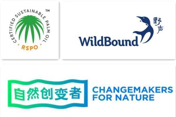 聚焦可持续棕榈油发展,2021全球青年影响力项目评比圆满闭幕