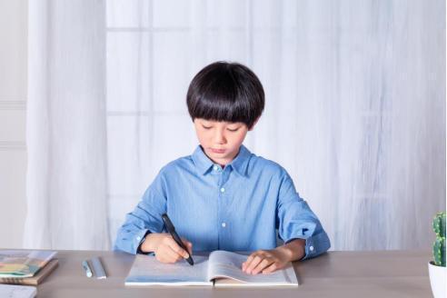 华为智选阿尔法蛋智能词典笔S:用专业展示品质,用匠心成就孩子语言学习
