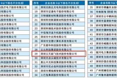 """云天励飞入选战略性新兴产业""""领航企业50强"""""""