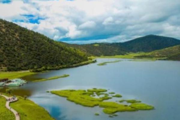 日立:从香格里拉到红树林,生态保护步履不停