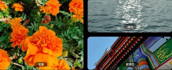 Find X3 Pro摄影师版影像系统升级 都有这些新变化